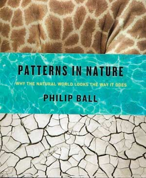 Cover of Patterns in Nature